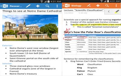 OneNote Screenshot 1